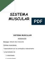 auladeintroduoaosistemamuscular-130906183430-.pdf