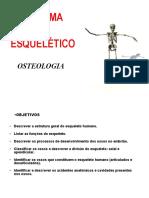 Sistema Esqueletico 2014