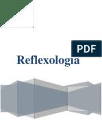 Reflexologia Puntos Finales