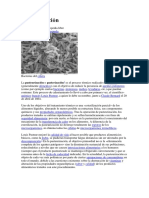 Pasteurizacin.docx