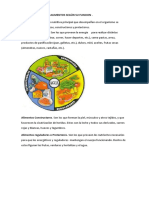 CLASIFICACION DE LOS ALIMENTOS SEGÚN SU FUNCION.docx