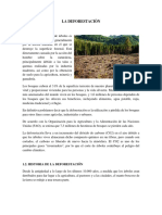 La Deforestaciòn
