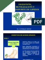 Semana 10 - Lipoproteinas y movilizacion de Trigliceridos(1)(1).pdf