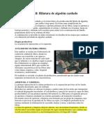 Tecnología Textil ALGODON.pdf1