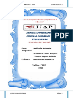 292102923-Informe-Empresa-Petroperu-Auditoria-Ambiental.docx