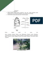 arsitektur pohon.pdf.pdf