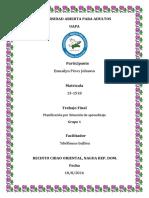 Trabajo Final Planificacion Esmailyn