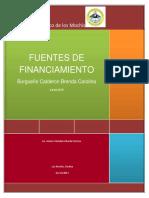 Fuentes de Financimiento
