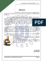 Guia de Practicas Histología 2017-II Semanas 2 y 3