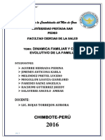 DINAMICA FAMILIAR Y CICLO EVOLUTIVO.docx