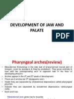 24 - Development of Jaw & Palate