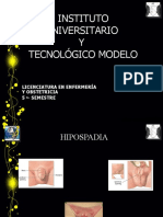 Ponencia hipospadia