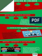 Infografía Consejos de Colonia