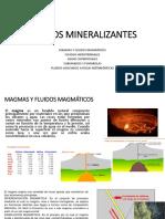 FLUIDOS MINERALIZANTES .pptx