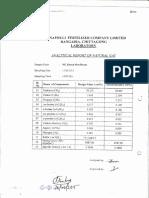 Gas Analysis Report