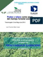 134842120 1 Podas y Raleos Como Parte Del Manejo Forestal