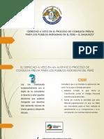 Derecho a Veto en El Proceso De
