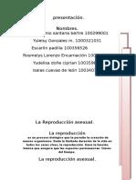 Lsb,Luis123
