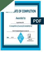 ESP Simulation Management Curriculum v9.0 certificate.pdf