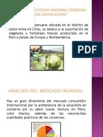 Presentacion de Alcachofas Peruanas