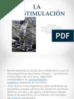labioestimulacin-140606221546-phpapp01