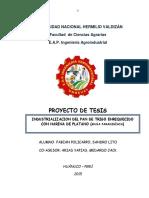 Proyecto Pan de Platano Fabian Policarpo Sandro