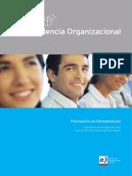 conciencia_organizacional