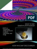 dmt powerpoint