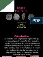 Protistes[1][1]