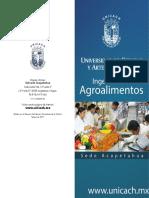 Agroalimentos-Acapetahua-2017