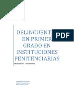 Delincuencia word.docx
