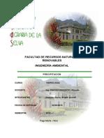informe 2 precipitacion.docx