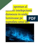 Jocul Spontan Al Luminii Intelepciunii Danseaza in Unde Luminoase Pe Suprafata Unui Lac