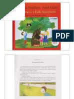 Os Primos e a Fada Atarantada-PDF