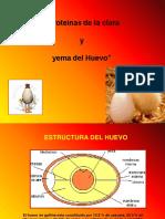 Proteinas Del Huevo