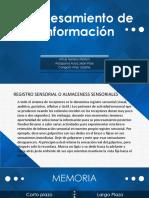 Procesamiento de Información_ppt