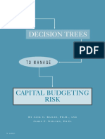 maq_winter01_decisiontress_and_budgetingrisk-pdf.pdf