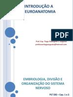 001 - Embriologia, Divisão, Organização