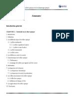 fibre optiqueet multiplexage.doc