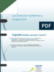 3. Lme y Desarrollo Cognitivo