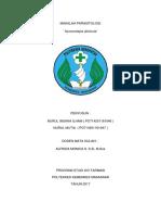 parasitologi Hymenolepis diminuta