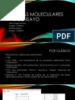 Pruebas Moleculares y Bioensayo