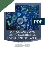 Diatomeas Como Bioindicadores