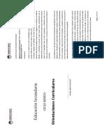 Orientaciones Curriculares - Secundaria