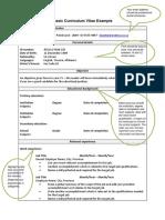Basic_Curriculum_Vitae_example.pdf