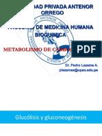 Metabolimos de Carbohidratos 1