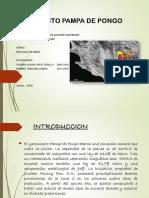 Proyecto Pampa Del Pongo
