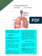 ap respiratorio