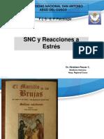 Agresion Estres y SNC 2017.pdf