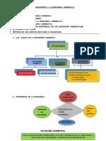 Introduccion Economia Ambiental